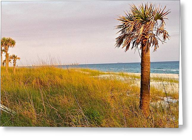 Panama City Beach Greeting Cards - Serenity Greeting Card by Leslie Brashear