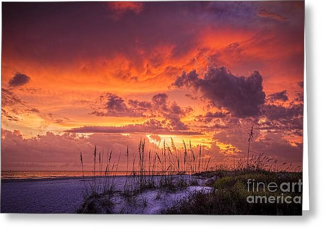 Thunder Cloud Greeting Cards - Serenity Greeting Card by Marvin Spates