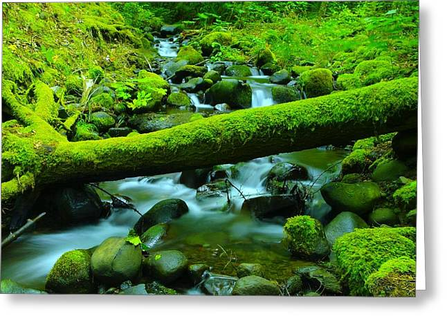 Serenity On The Rocks Greeting Card by Jeff Swan