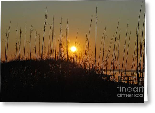 Interior Scene Greeting Cards - Serenity Point Sunset Greeting Card by Bob Sample