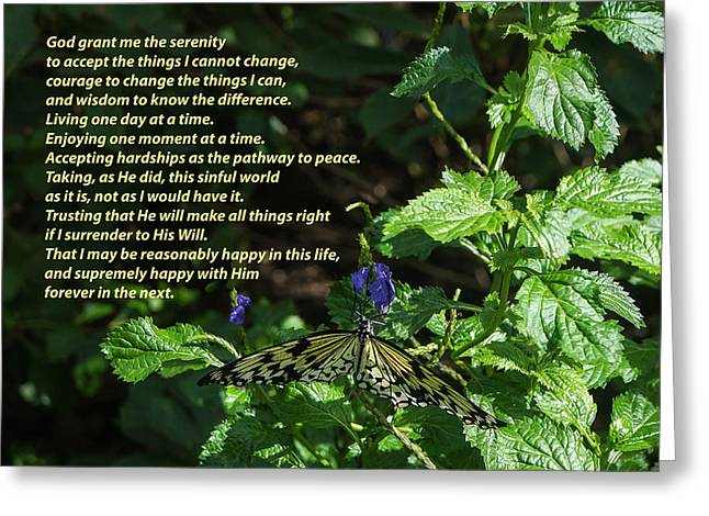 12 Steps Greeting Cards - Serenity Prayer - Long Form with Butterfly Greeting Card by Jeanette Beatty