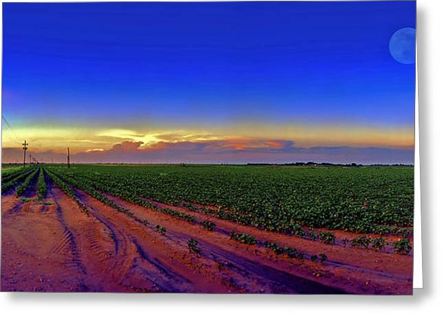 Panorama Greeting Cards - Serenity Greeting Card by Robert Hudnall