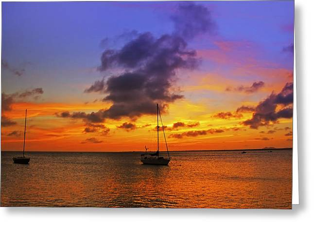 Bonaire Greeting Cards - Serenity Greeting Card by Stephen Anderson