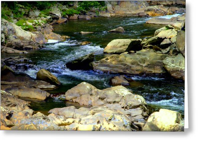 Nc Estate Greeting Cards - Serenity Stream Greeting Card by Karen Wiles