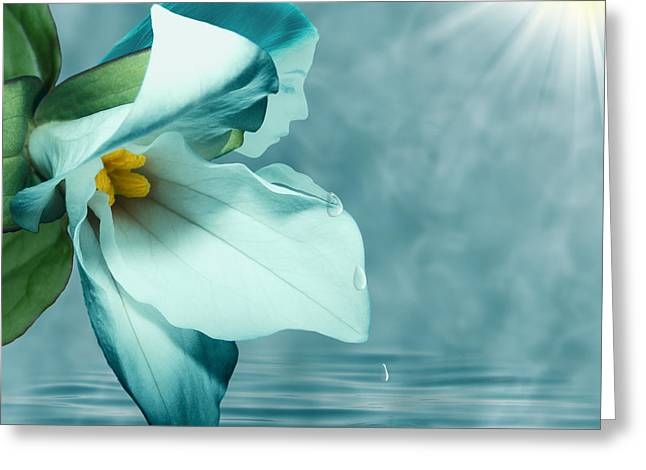 Floral Digital Art Digital Art Digital Art Greeting Cards - Serenity Greeting Card by Torie Tiffany