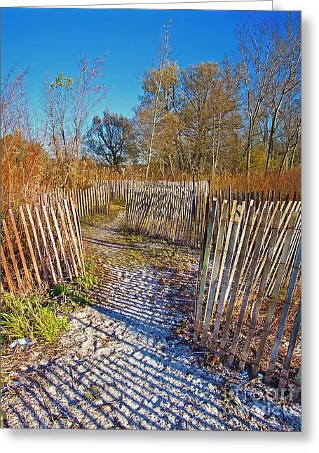Serenity Trail.... Greeting Card by Nina Stavlund