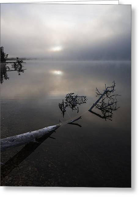 Quite Greeting Cards - Serenity Greeting Card by Vishwanath Bhat