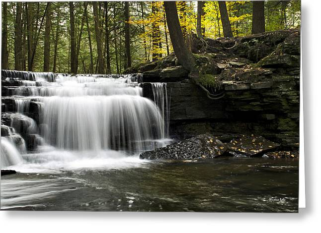 Water Flowing Greeting Cards - Serenity Waterfalls Landscape Greeting Card by Christina Rollo