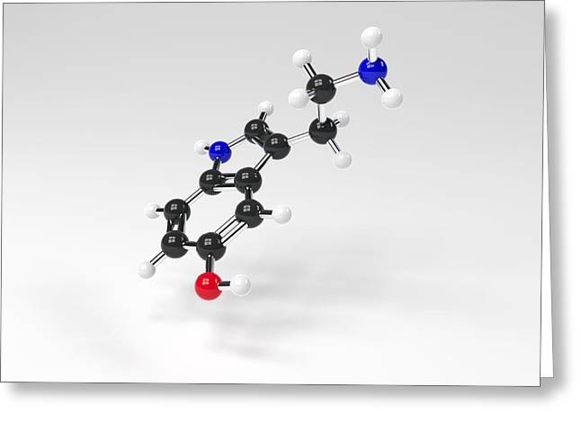 Serotonin Greeting Cards - Serotonin molecule Greeting Card by Science Photo Library