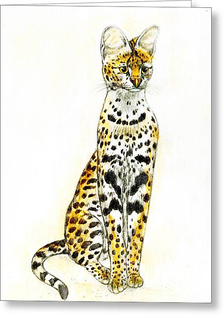 White Serval Greeting Cards - Serval Greeting Card by Kurt Tessmann
