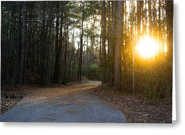 Foggy Day Greeting Cards - Setting Sun on the Forest Path Greeting Card by Shelby  Young