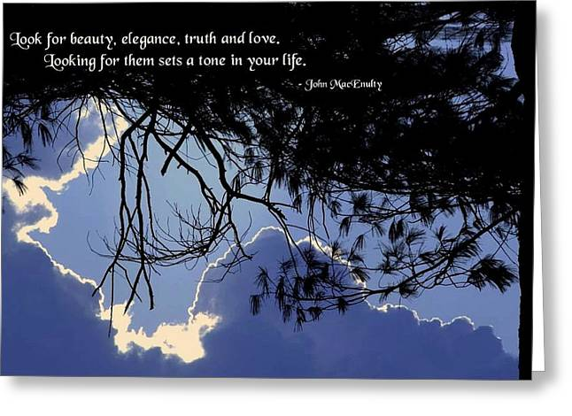 Discernment Greeting Cards - Setting the Tone Greeting Card by Mike Flynn