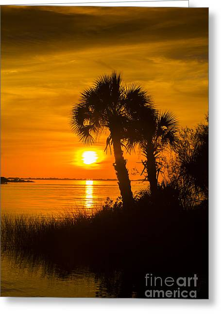 Wildlife Refuge. Greeting Cards - Settting Sun Greeting Card by Marvin Spates
