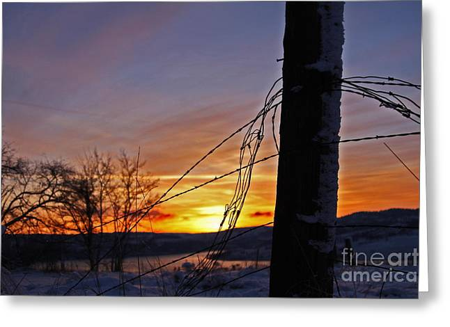 Hawk Creek Greeting Cards - Seven Bays Sunset Eighty Eight Greeting Card by Donald Sewell