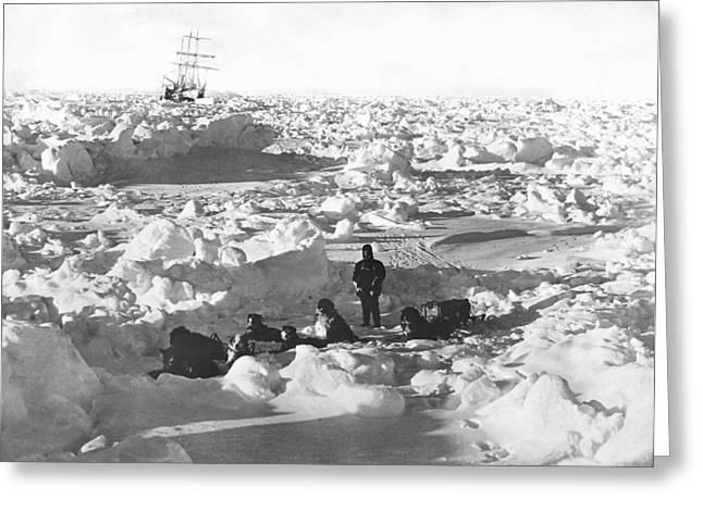Sled Dogs Greeting Cards - Shackletons Antarctic Venture Greeting Card by Underwood Archives