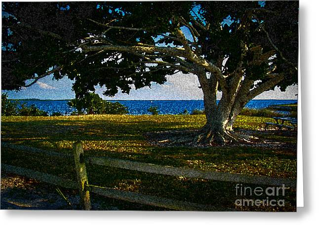 Shade Tree In The Park Greeting Card by Eric Geschwindner