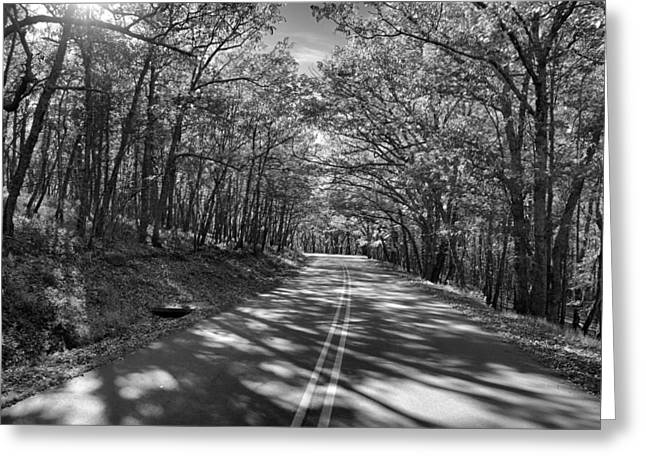 Scenic Drive Greeting Cards - Shaded Rd BW Greeting Card by Patrick M Lynch
