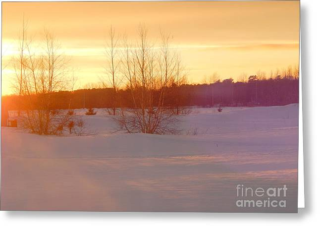 Wintry Greeting Cards - Shades of a winter sunset Greeting Card by Karen Cook