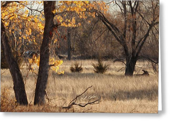 Bill Kesler Greeting Cards - Shades Of Autumn Greeting Card by Bill Kesler
