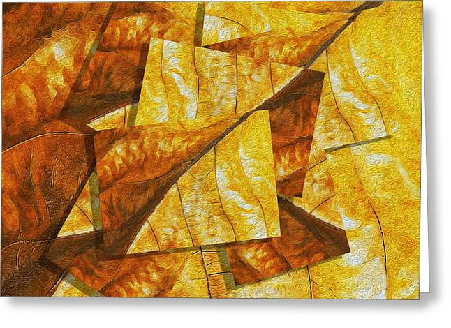 Shades of Autumn Greeting Card by Jack Zulli