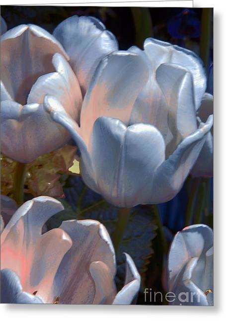 Struckle Digital Art Greeting Cards - Shades Of Color Greeting Card by Kathleen Struckle