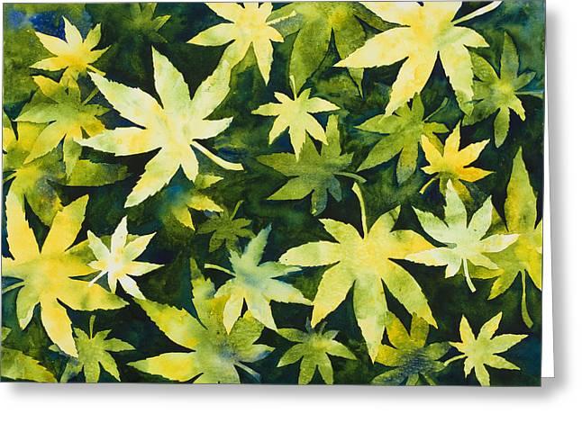 Shades Of Green Greeting Card by Mary Giacomini