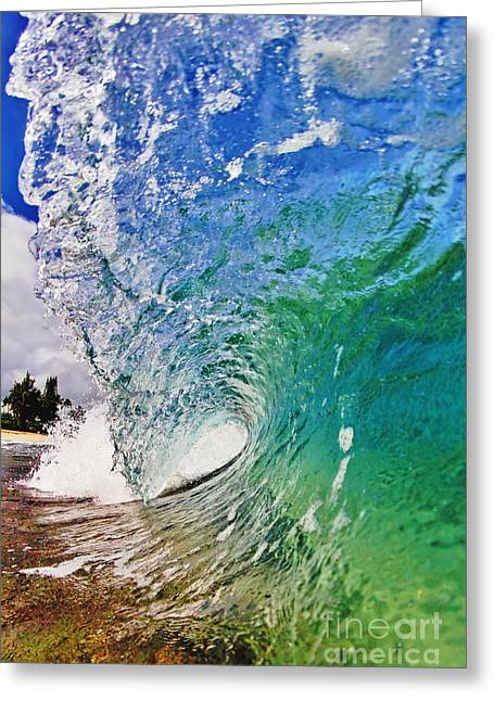 Surfing Art Greeting Cards - Shades of Lani Greeting Card by Paul Topp