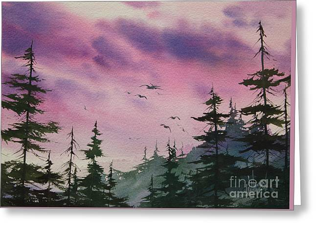 Winthrop Paintings Greeting Cards - Shades of Sunset Greeting Card by James Williamson