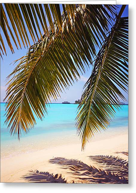 Island Imagination Greeting Cards - Shades of Tropics Greeting Card by Jenny Rainbow