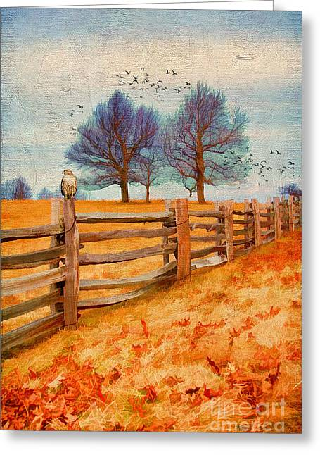 Overcast Day Greeting Cards - Shades of Winter Greeting Card by Darren Fisher