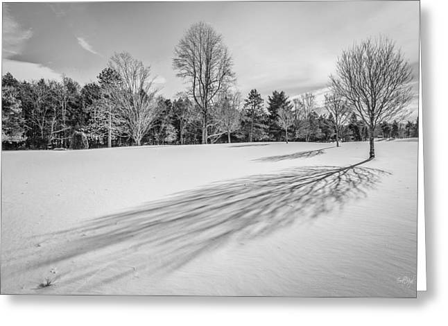 Winterscape Greeting Cards - Shades of Winter Greeting Card by Everet Regal
