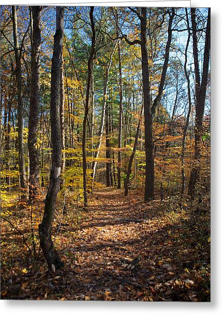 Indiana Autumn Greeting Cards - Shades Greeting Card by Sean Buchanan