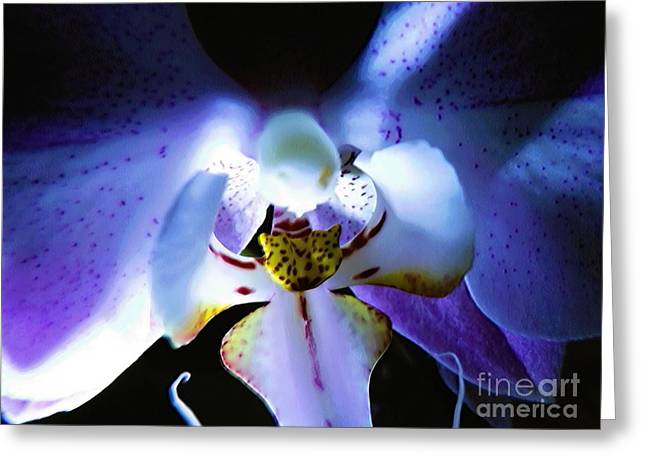 Abstract Digital Photographs Greeting Cards - Shadow Dance Greeting Card by Robyn King