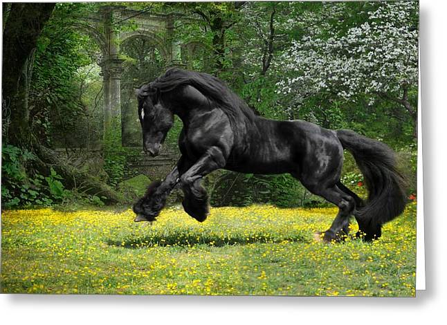 Horses In Print Greeting Cards - Shadow Liberty Greeting Card by Fran J Scott