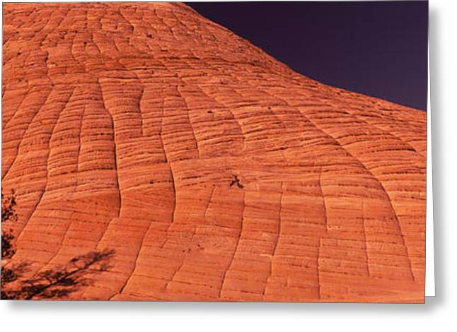 Checkerboard Greeting Cards - Shadow Of Trees On A Rock Formation Greeting Card by Panoramic Images