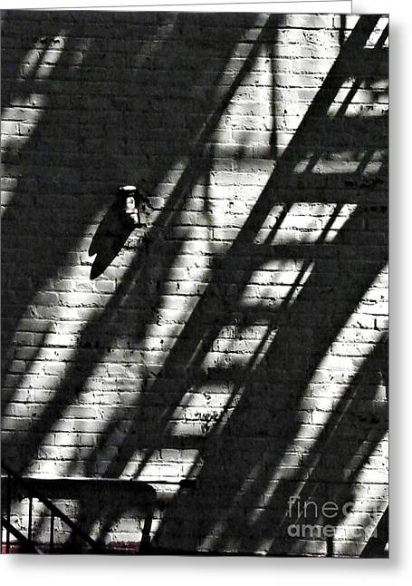 Sarah Loft Greeting Cards - Shadow on the Wall 2 Greeting Card by Sarah Loft