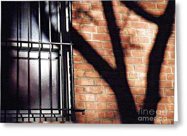 Shadow On The Wall Greeting Card by Sarah Loft