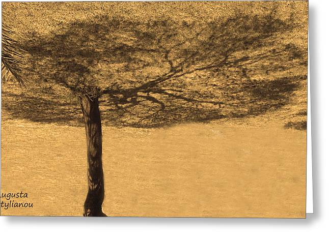 """""""strange Trees"""" Greeting Cards - Shadow Tree Greeting Card by Augusta Stylianou"""