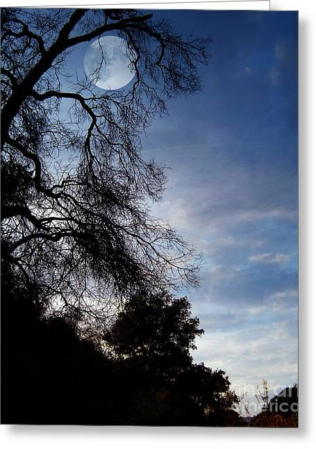Photo Effects Greeting Cards - Shadowlands 4 Greeting Card by Bedros Awak