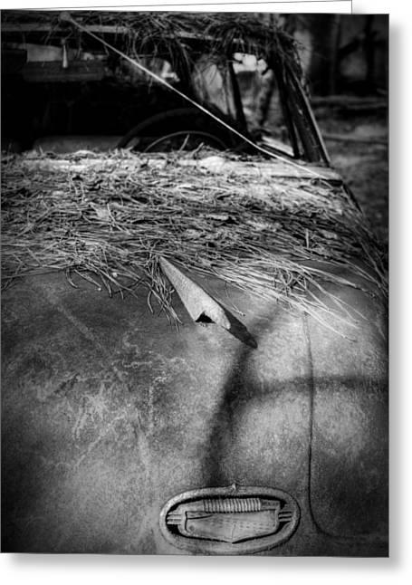 Pine Needles Greeting Cards - Shadows and Pine Straw On An Old Rusty Car in Black and White Greeting Card by Greg Mimbs