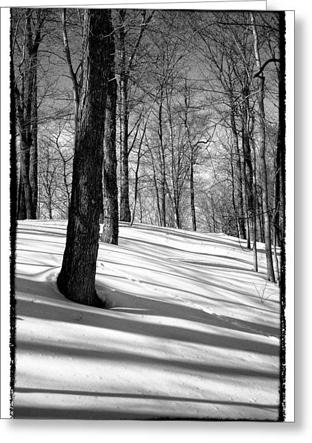Chairlift Greeting Cards - Shadows at McCauley Mountain Greeting Card by David Patterson