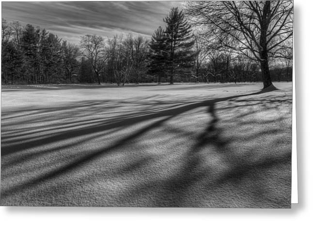 Winter Landscape Greeting Cards - Shadows In The Park Greeting Card by Bill  Wakeley