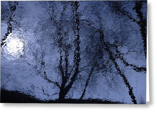 Shadows Of Reality  Greeting Card by Steven Milner