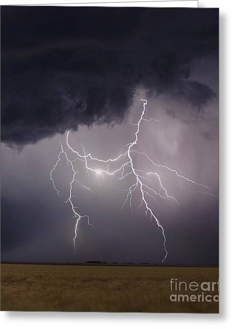 Lightning Photographer Greeting Cards - Shadows Of Thor Greeting Card by Ryan Smith