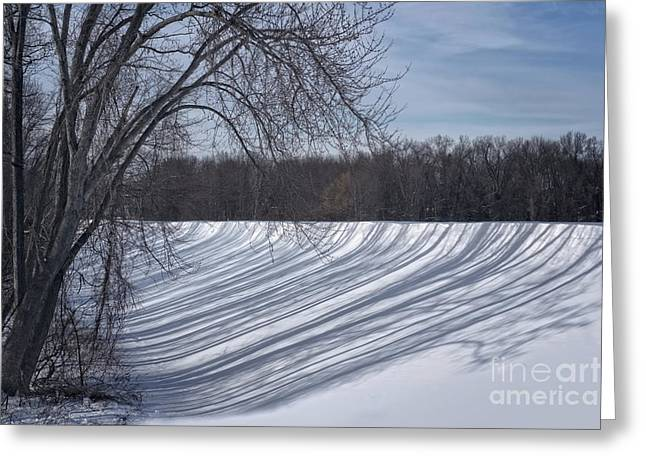 Shadowplay Greeting Cards - Shadows  Greeting Card by HD Connelly