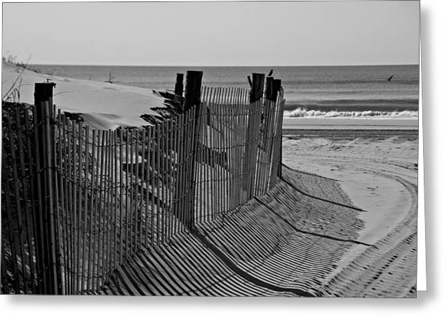 Stein Greeting Cards - Shadows on the beach. Greeting Card by Valerie Stein