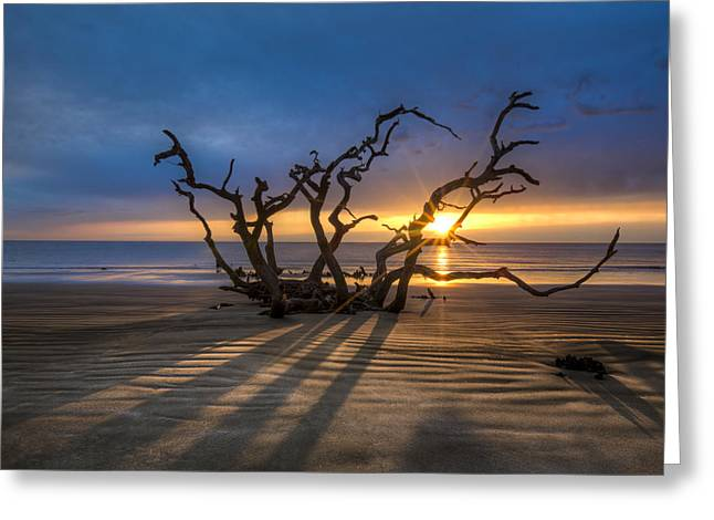 Shadows On The Sand Greeting Card by Debra and Dave Vanderlaan