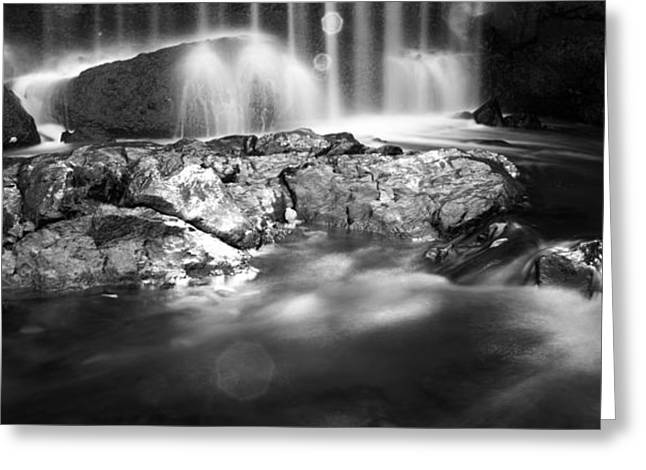 Snowy Brook Greeting Cards - Shadowy Falls Greeting Card by Shelby  Young