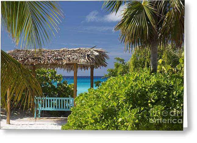 Half Moon Cay Greeting Cards - Shady View - Bahamas Greeting Card by Brian Jannsen