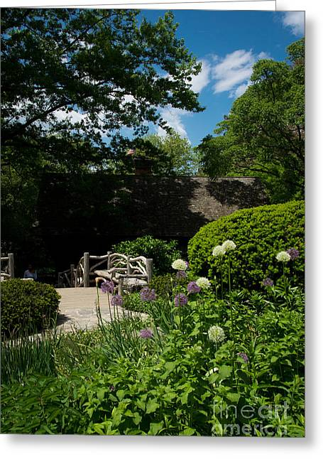 Summertime Greeting Cards - Shakespeares Garden Central Park Greeting Card by Amy Cicconi